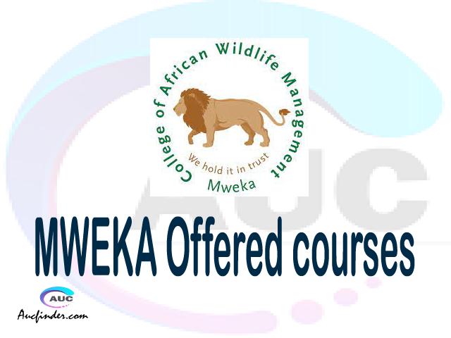 CAWM - MWEKA courses 2021, College of African Wildlife Management Mweka offered courses, CAWM - MWEKA courses and requirements, kozi za chuo kikuu cha College of African Wildlife Management Mweka, CAWM - MWEKA diploma certificate Undergraduate degree and postgraduate courses