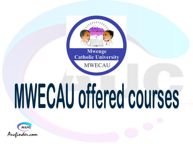 MWECAU courses 2021, Mwenge Catholic University offered courses, MWECAU courses and requirements, kozi za chuo kikuu cha Mwenge Catholic University, MWECAU diploma certificate Undergraduate degree and postgraduate courses